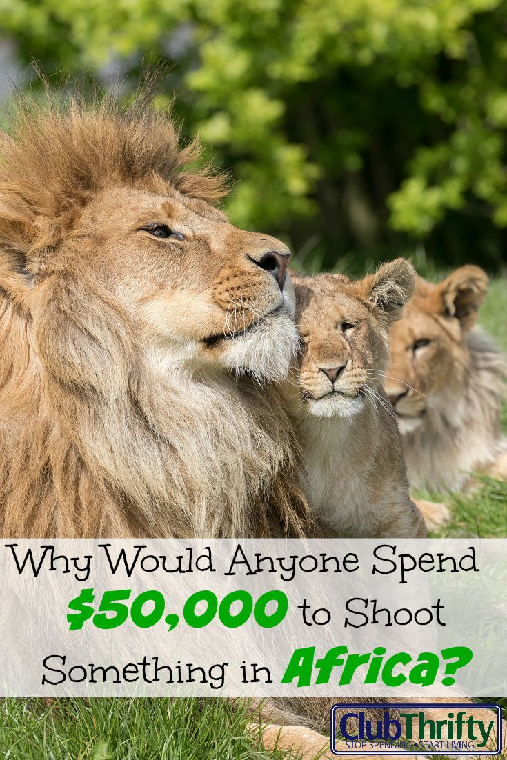 I can think of a million ways to spend $50,000 - like on a debaucherous trip to the Maldives, for example. Hunting lions in Africa is not one of them.